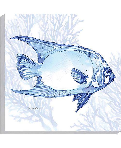 "Paragon Fish- Gallery Wrap Wall Art, 36"" x 36"""