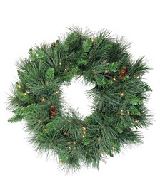 "24"" Pre-Lit White Valley Pine Artificial Christmas Wreath - Clear Lights"