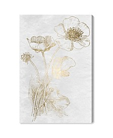 Poppy Sketch Gold Canvas Art Collection