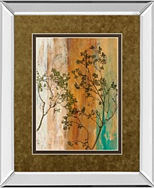 "Spring Branch II by  Norm Olson Mirror Framed Print Wall Art, 34"" x 40"""