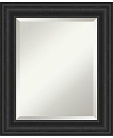 """Shipwreck Framed Bathroom Vanity Wall Mirror, 21.38"""" x 25.38"""""""