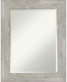 "Dove Framed Bathroom Vanity Wall Mirror, 23.88"" x 29.88"""