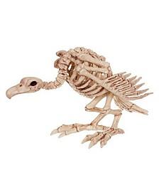 Skeleton Vulture