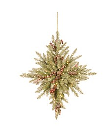 """32"""" Snowy Dunhill® Fir Bethlehem Star with Battery Operated LED Lights"""