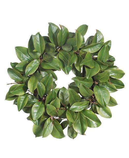 Winward Silks Winward International Magnolia Leaf Twig Wreath