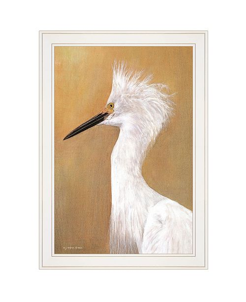 """Trendy Decor 4U Trendy Decor 4U Bad Hair Day by Jacquee Krause, Ready to hang Framed Print, White Frame, 15"""" x 21"""""""