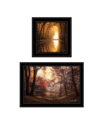 "Nature's Reflections 2-Piece Vignette by Martin Podt, Black Frame, 27"" x 15"""