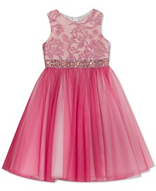 Toddler Girls Embroidered Sparkle Tulle Dress