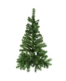 36-Inch Norway Pine Half Tree