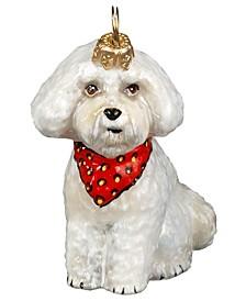 Bichon Puppy w/ Bandana