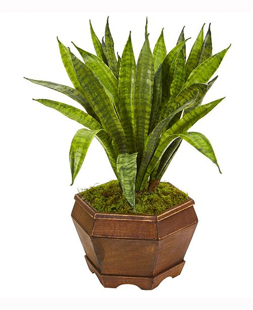 Nearly Natural 22in. Sansevieria Artificial Plant in Decorative Planter