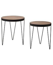Pasadena 2pc Side Table Set