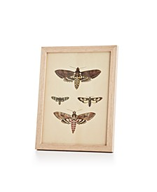 CLOSEOUT! English Garden Dragonfly Wall Art