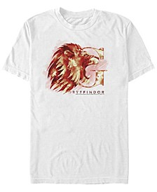 Harry Potter Men's Gryffindor Mystic Wash Short Sleeve T-Shirt
