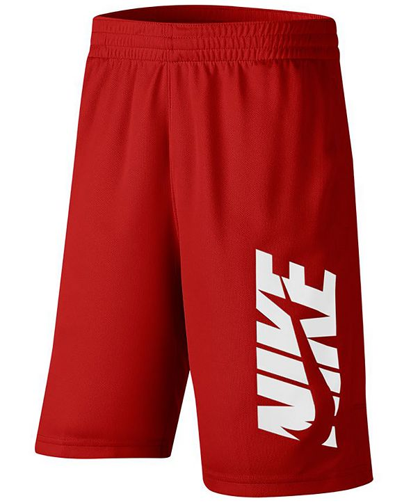 Nike Big Boys Training Shorts
