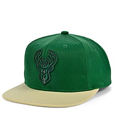 Milwaukee Bucks 2 Team Reflective Snapback Cap
