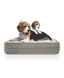 Orthopedic Memory Foam Pet Bed with Stain Repellant Technology