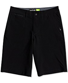 "Big Boys Union Amphibian 19"" Shorts"