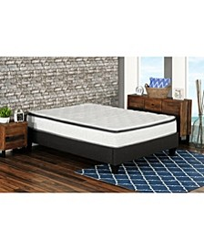 "Primo Berri 10"" Pocket Coil Lumber Gel Firm Mattress - Twin XL"