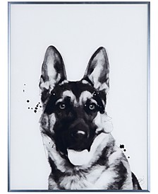 """German Shepherd Pet Paintings on Reverse Printed Glass Encased with a Gunmetal Anodized Frame Wall Art, 24"""" x 18"""" x 1"""""""