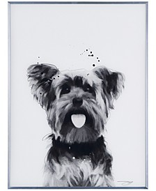 "Yorkshire Terrier Pet Paintings on Reverse Printed Glass Encased with a Gunmetal Anodized Frame Wall Art, 24"" x 18"" x 1"""
