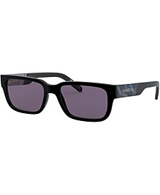 Men's Sunglasses, AN4273