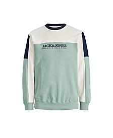 Men's Crew Neck Sweatshirt