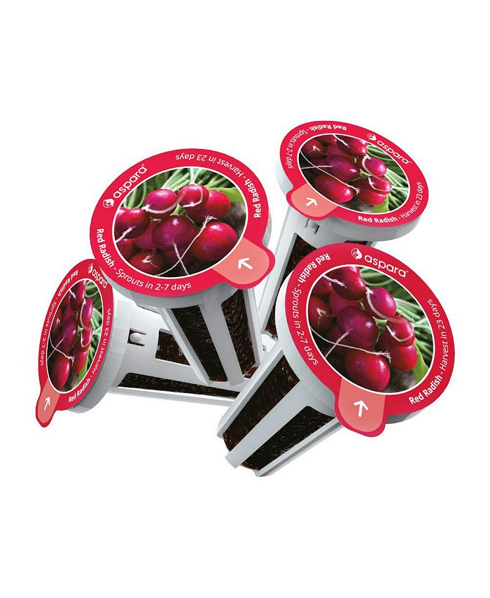 Aspara - KRR0001 8 capsule seed kit - Red Radish