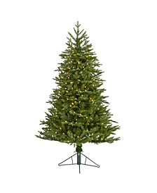 Cambridge Fir Artificial Christmas Tree with 300 Clear Warm Multifunction LED Lights with Instant Connect Technology and 570 Bendable Branches