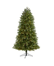 Oregon Fir Artificial Christmas Tree with 1350 Warm Micro Multifunction LED Lights with Remote Control, Instant Connect Technology and 1218 Bendable Branches