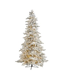 Flocked Grand Northern Rocky Fir Artificial Christmas Tree with 6672 Warm Cluster Multifunction LED Lights and 1071 Bendable Branches
