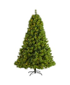 Scotch Pine Artificial Christmas Tree with 550 Clear LED Lights