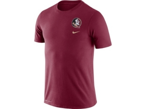 Nike Florida State Seminoles Men's Dri-Fit Cotton Dna T-Shirt