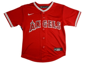 Nike Toddler Los Angeles Angels Official Blank Jersey