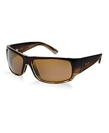 Polarized World Cup Sunglasses, H266-01