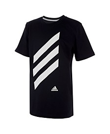 Big Boys Short Sleeve Sport Stripe Tee