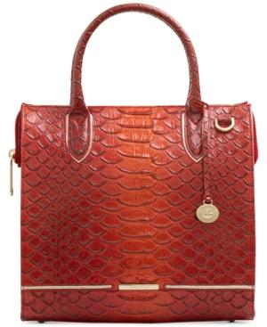 Caroline Brasilia Leather Satchel