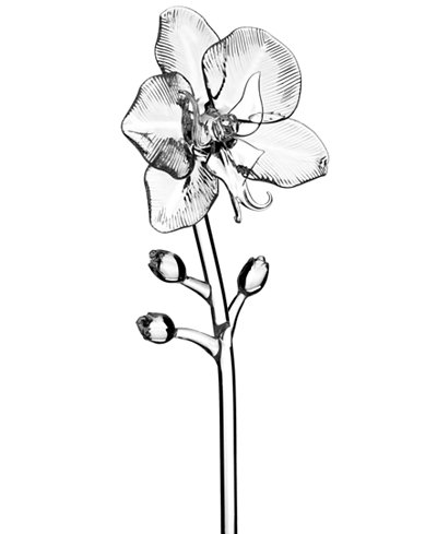 Waterford Fleurology by Jeff Leatham Orchid Flower