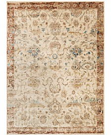 "Anastasia  AF-04 Antique Ivory/Rust 7'10"" x 10'10"" Area Rug"