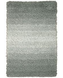 Nourison Ombre 2' x 3' Shag Rug