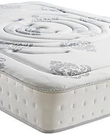 Sleep Trends Rubi King 10 5 Wred Coil Hybrid Firm Pillow Top Mattress Quick Ship