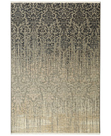 Karastan Titanium Tiberio Gray Area Rug Collection