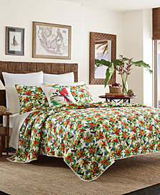 Tommy Bahama Home Parrot Cove Bedding Collection