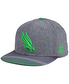 Top of the World North Texas Mean Green Tarnesh Snapback Cap