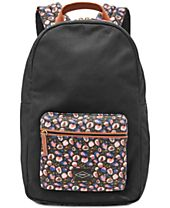 Fossil Phoebe Medium Backpack