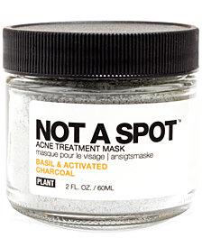 PLANT Apothecary Not A Spot Acne Treatment Mask