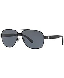 Polarized Polarized Sunglasses , PH3110