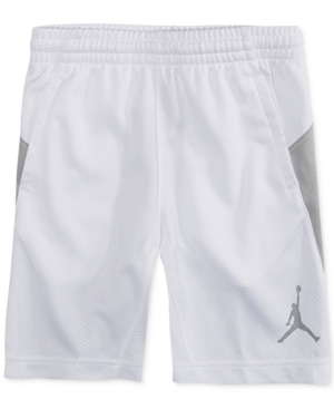 Jordan Basic Basketball Shorts Big Boys (820)
