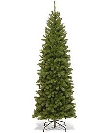 7' North Valley Spruce Pencil Slim Tree