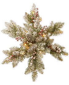 """National Tree Company 18"""" Snowy Dunhill Fir Snowflake with LED Lights"""